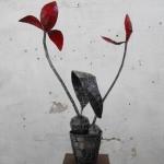 Tulpen im Topf  9-3-12mail_5034