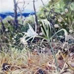 Strandlilien-1-50x50-2014