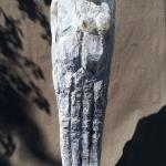 Grosses-Paar-1.96m-Bronze-2020