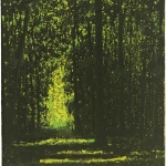 Wald-2015-Mischtechnik-auf-Leinwand-50x40cm-WEB
